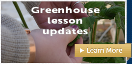 Updated greenhouse lessons